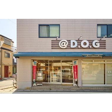 @D.O.G