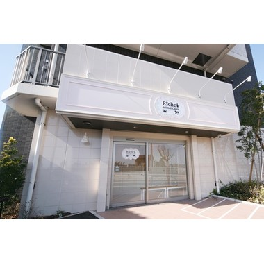 Riche Animal Clinic(トリミング)