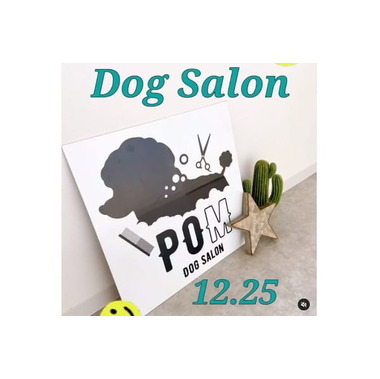 Dog salon POM
