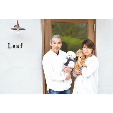 dog salon Leaf