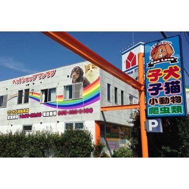 ワンラブ 浜松本店