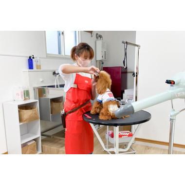 Dog Salon CIEL