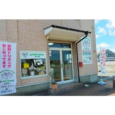 animal salon マハロ