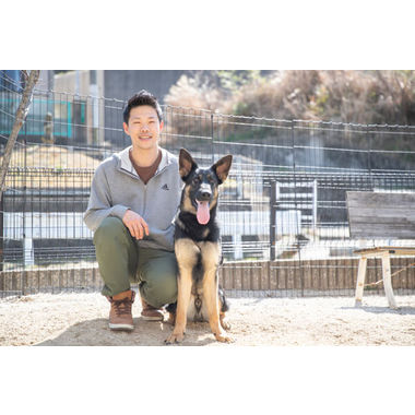 Dog Training WILD HALF