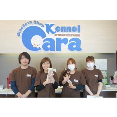 ケンネルキャラ 県央店