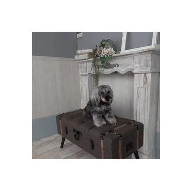 Doggy Salon MINX