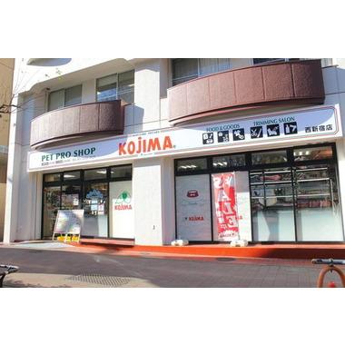 ペットの専門店 コジマ 西新宿店