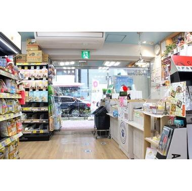 ペットの専門店 コジマ 三軒茶屋店