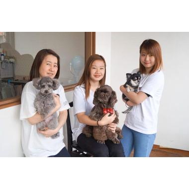 Dog's おしゃれ専科 クーシー