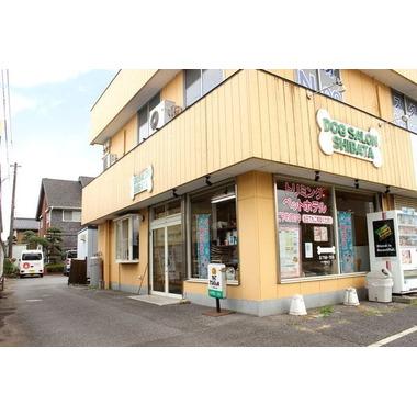 DOGサロンシバタ(AIAI関宿店 ホテル)