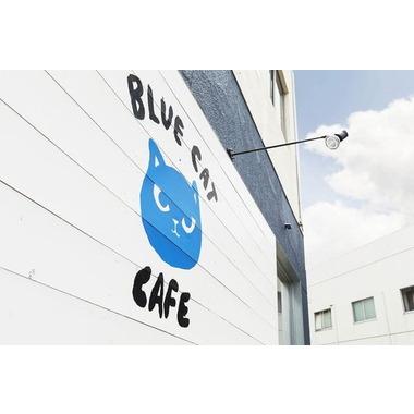 ブルーキャットカフェ