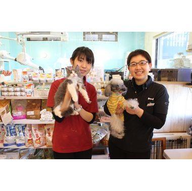 犬ごころ 東川口店