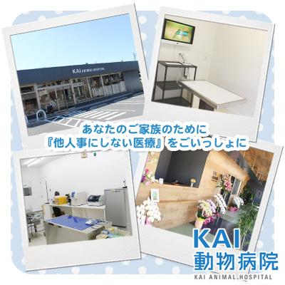 KAI動物病院