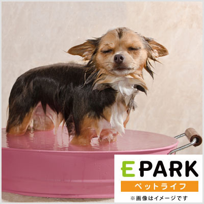 PET SALON GOO DOGS