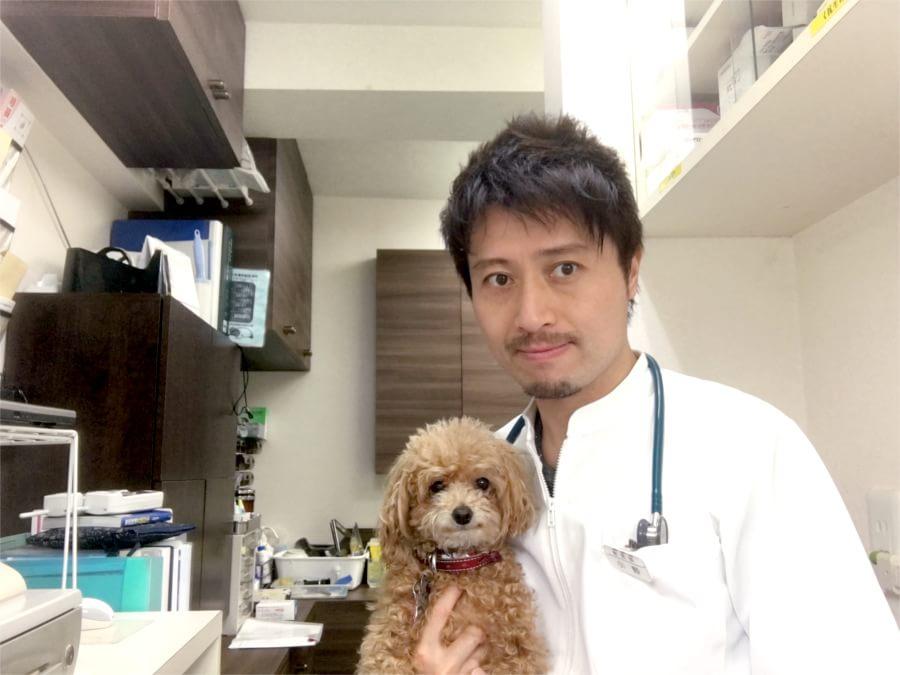 プーアル動物病院