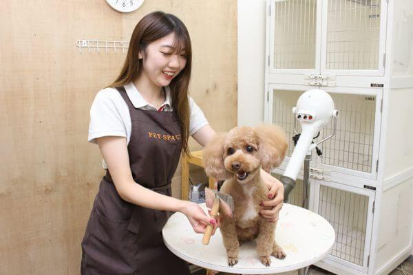 PET-SPA 日進店(ホテル)