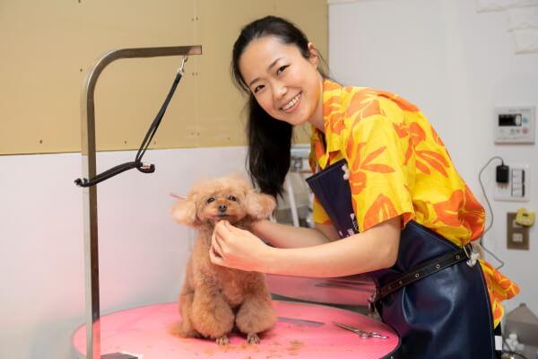 333 Dog-Care トリマーとトイプードルの写真