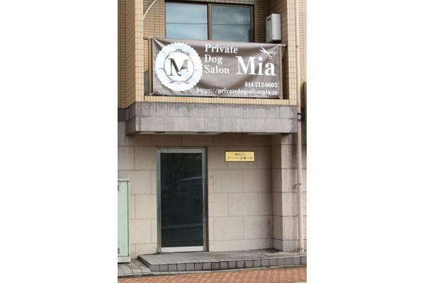 Private Dog Salon Mia