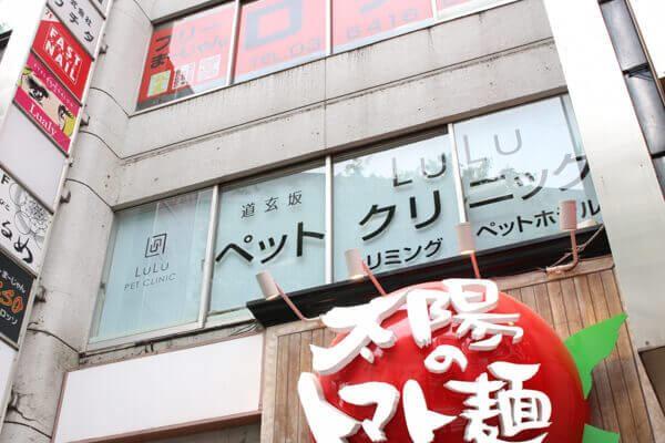 渋谷区の道玄坂 LuLu PET CLINICです