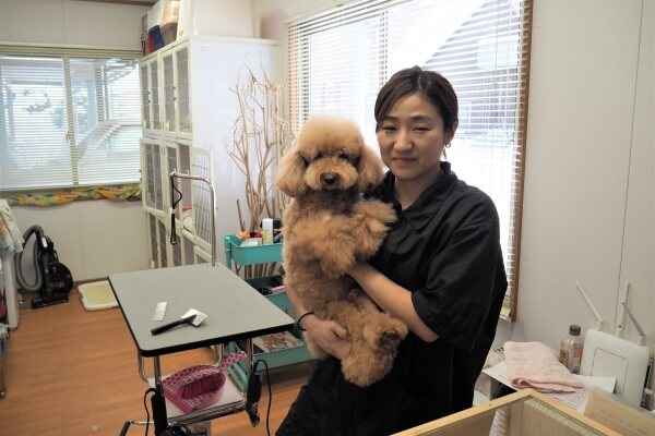 Pet Salon fluffy