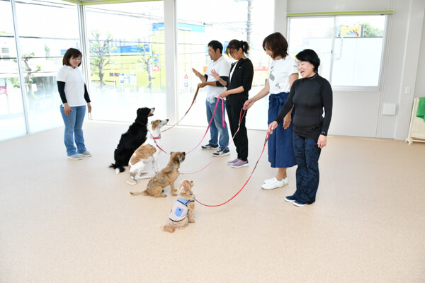 BASE Dog Training School(ホテル)