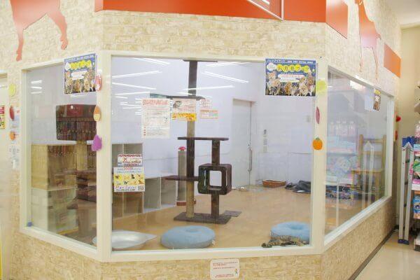 ペットアイランド(エバーペット)浦和中尾店