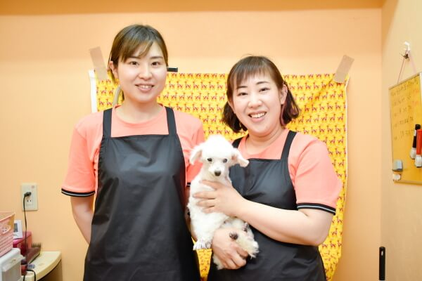 Dog salon Calla lily