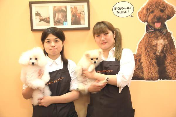 PET-SPA ひたち野うしく店(ホテル)