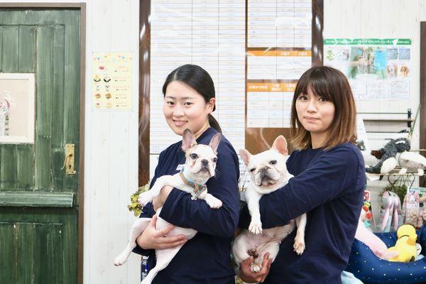 Pet's Salon パレハ(ホテル)