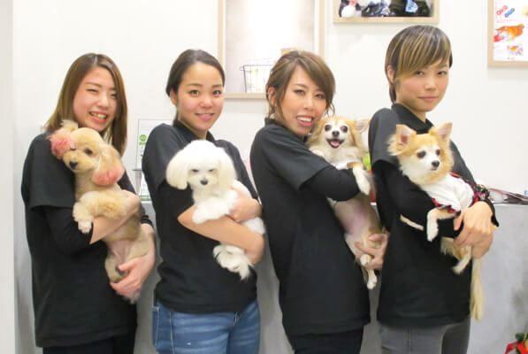 LUXBE DOG 阿倍野ルシアス店