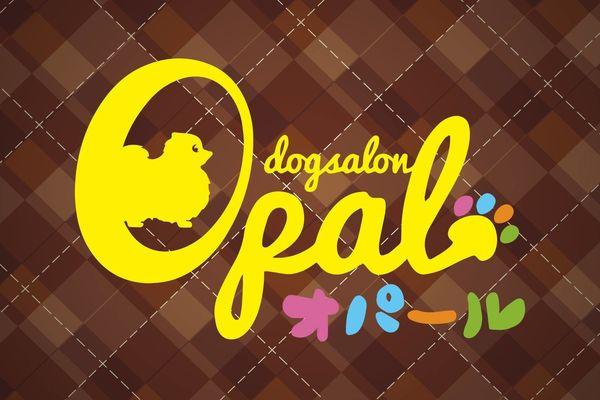 dogsalon Opal