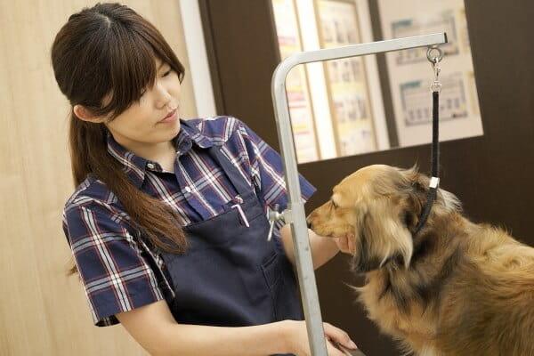PETEMOBeautySalon水戸内原店 / 7月11日リニューアルオープン