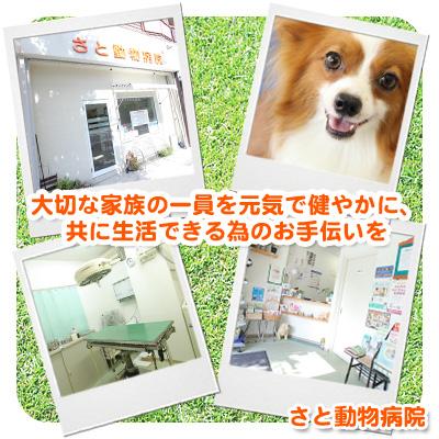 さと動物病院