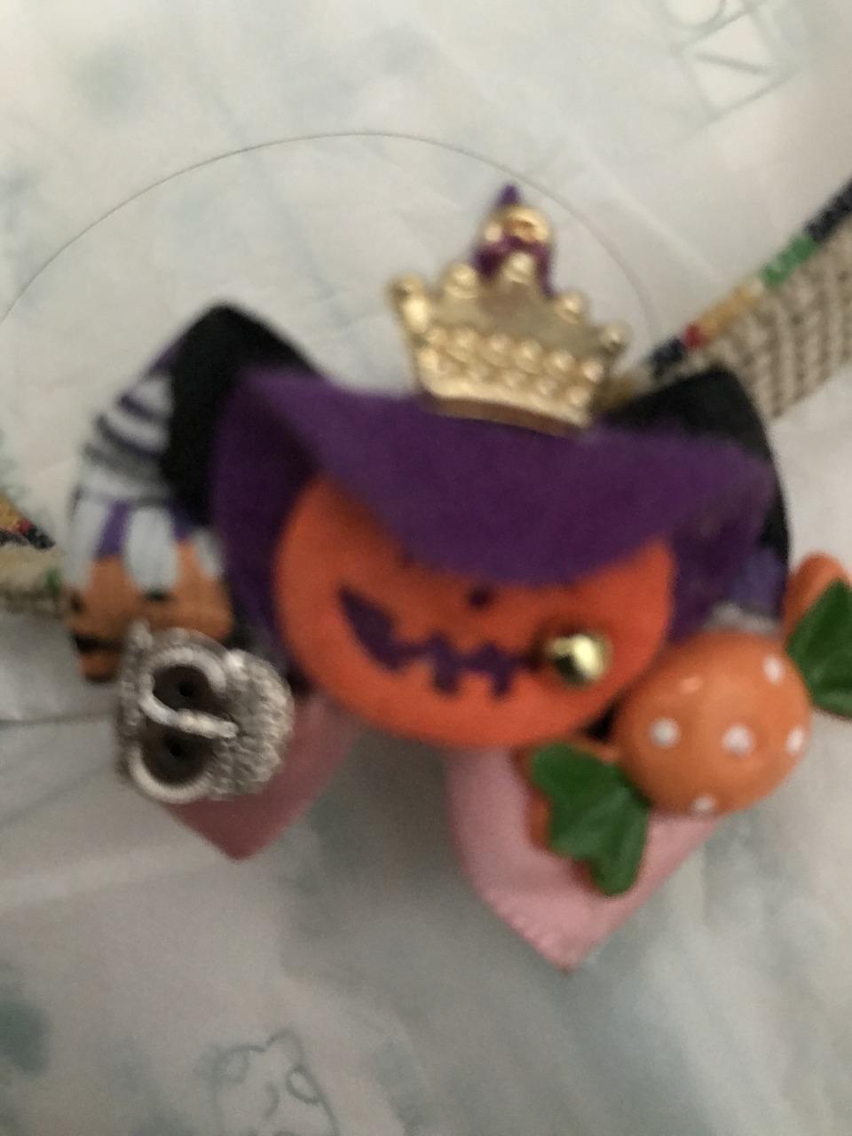 リードにハロウィンの飾りをつけていただきました