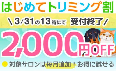 【2000円OFF】気になるサロンお得に♪ はじめてトリミング割