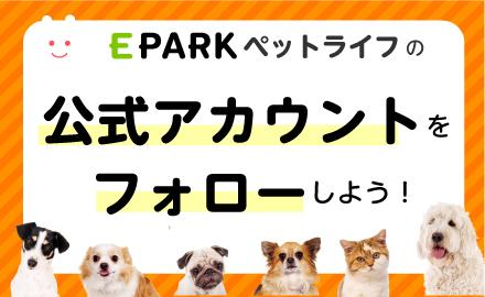 EPARKペットライフSNSをフォローしてうれしい特典情報をGETしよう!